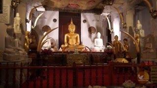 Вечерняя служба в Храме Зуба Будды в Канди, Шри-Ланка(http://Promo.TayaFinch.ru ☸ В Храм Зуба Будды лучше всего приходить к 6 часам вечера. Именно в это время начинается..., 2016-03-05T23:26:07.000Z)