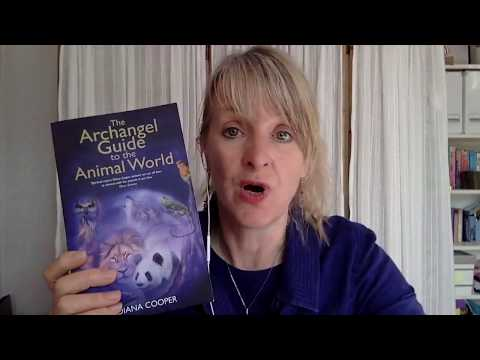 Chi Time interviews: Diana Cooper - Ascension with Animals, Angels and Dragons