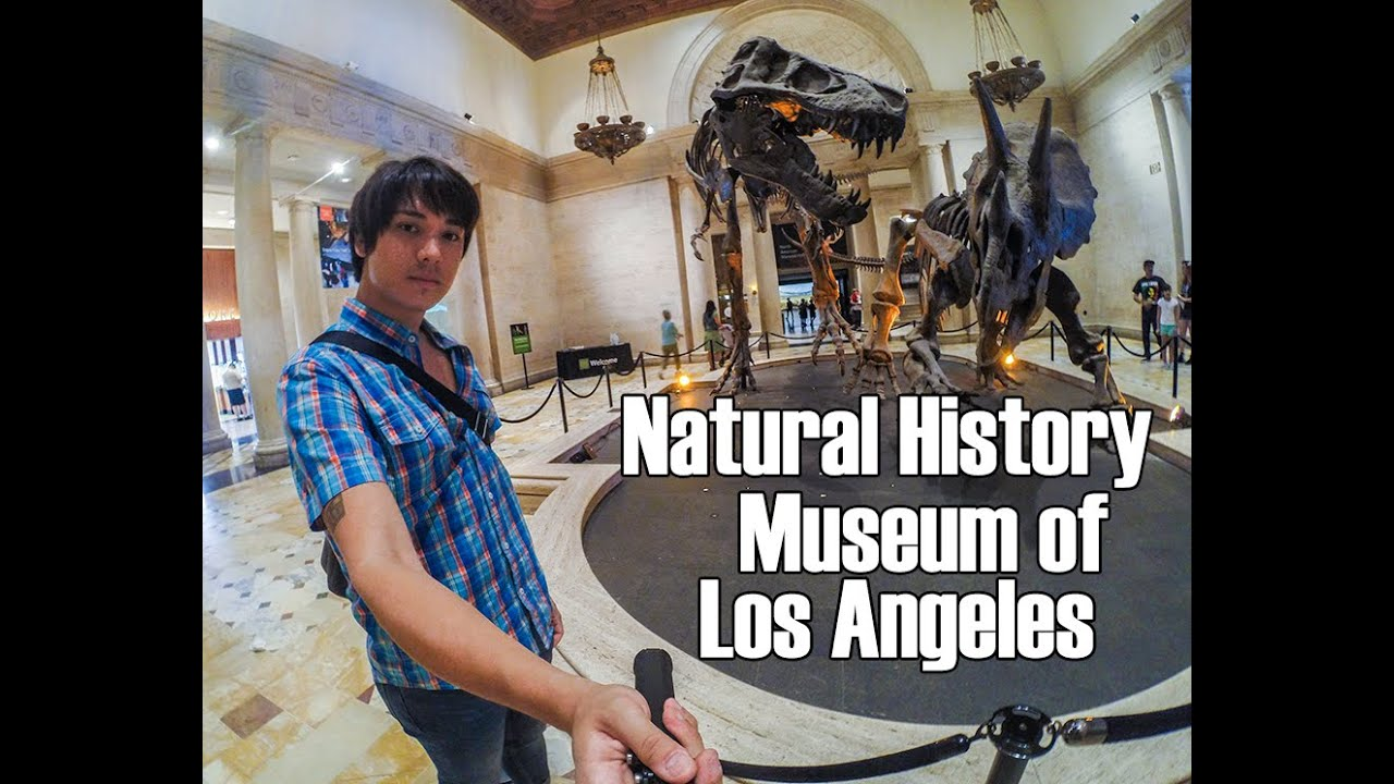 Natural History Museum Of Los Angeles Count