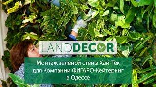 Монтаж зеленой стены Хай-Тек от LAND DECOR для Компании ФИГАРО-Кейтеринг в Одессе(, 2015-06-01T14:01:30.000Z)
