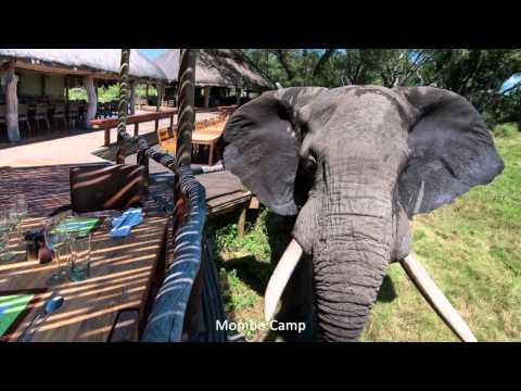 Better Late Luxury: Wilderness Safaris Botswana