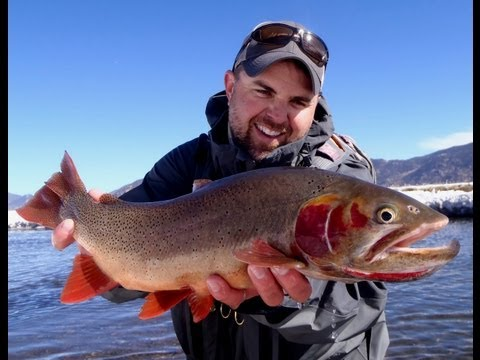 Fly Fishing The Dream Stream-Winter Dreaming