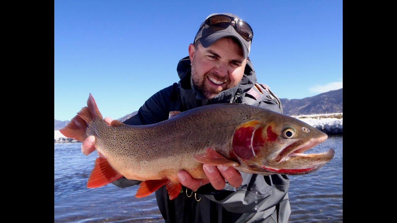 DIY Guide to Fly the South Platte River in Colorado · DIY ... on