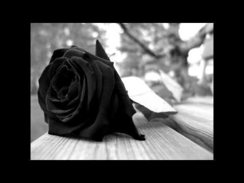 Flores Negras - Los Melódicos