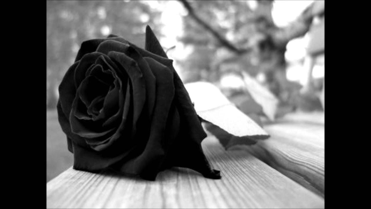 Flores Negras Los Melódicos Youtube