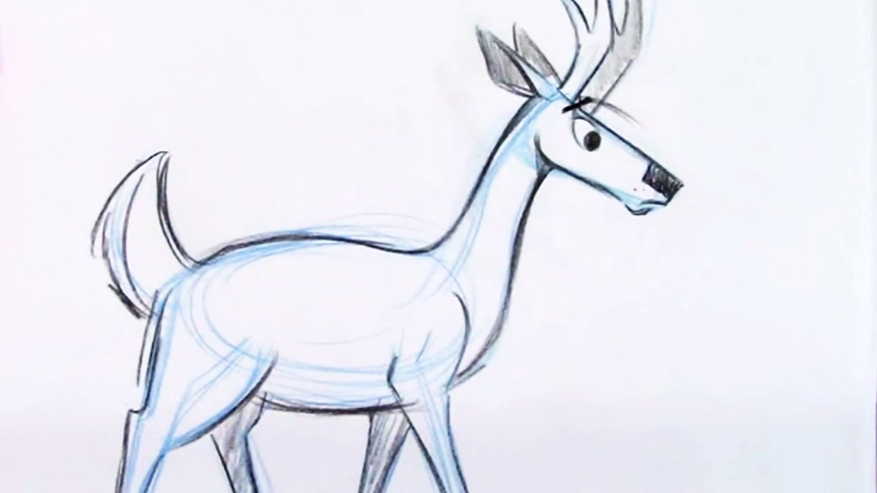 draw a deer youtube