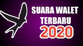 SUARA WALET TERBARU 2020 BY INDO WALET57