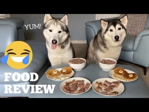 Huskies Review Steak & Pancakes! [MALE V FEMALE!] [WITH CAPTIONS]
