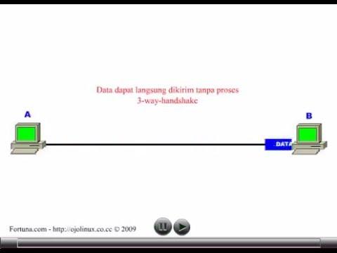 Prinsip Kerja User Datagram Protocol (UDP)