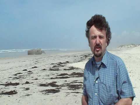Coastal Systems: Coastal Sand Dunes 2