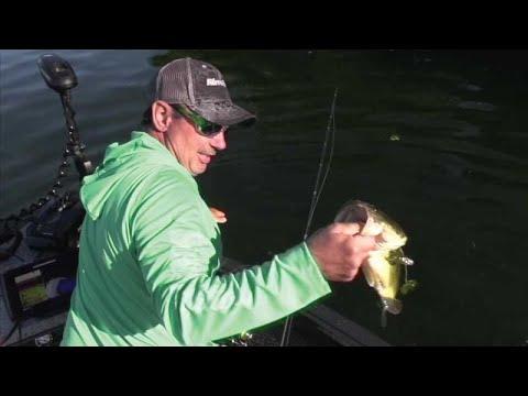 Bass Of Green Lake