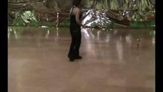 שבת מנוחה ריקוד, ריקודי עם, מדגימה תמי דביר