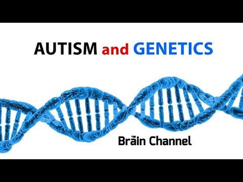 Autism And Genetics