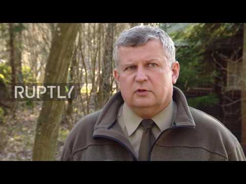 Poland: Hitler's 'Wolf's Lair' estate seized by bailiffs after rental disputes