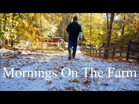 Life On a Homestead!! Mornings On Our Farm.