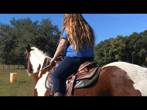 How to tack up a horse western & how to put a bridle on