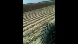 Farming in Arkansas