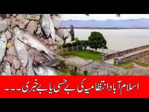 Poisonous water in Rawal Dam | 24 News HD