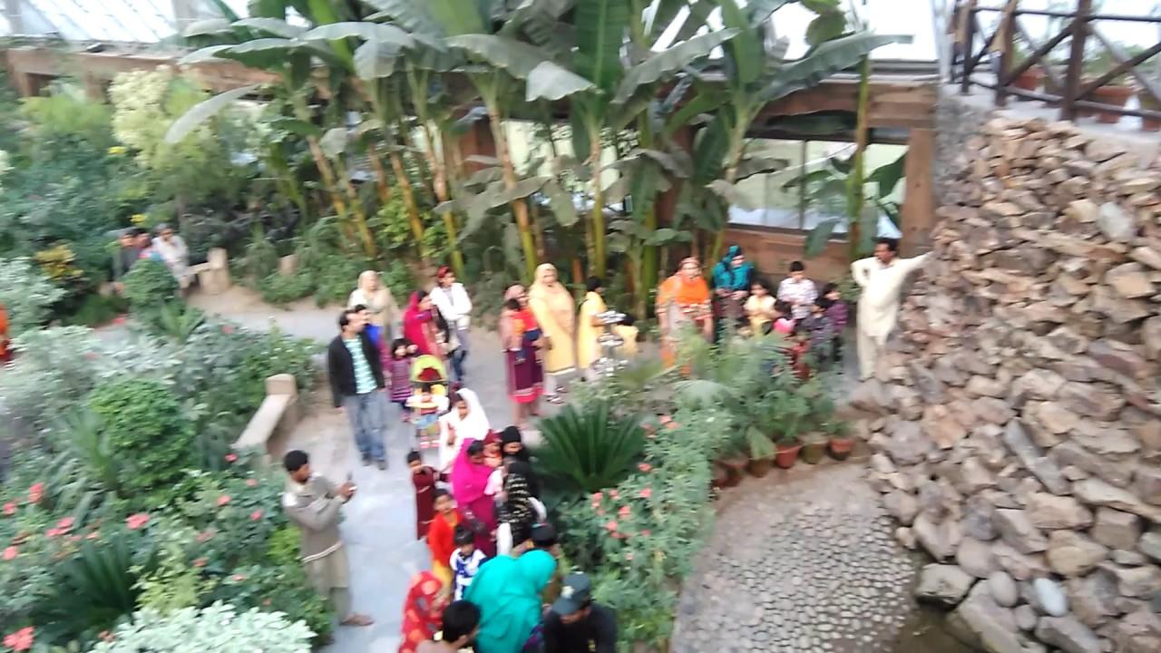 Botanical Butterfly Garden Lahore Shahwar57 Youtube