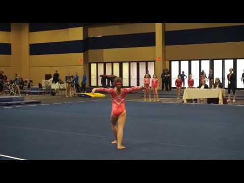 Internet Gymnasts Olympics  Team Finals (Part 2)