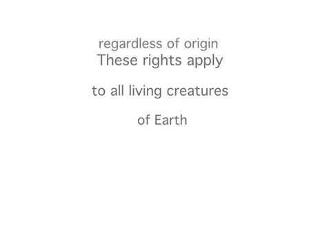Article 2: Universal Declaration; Star Travelers, Through the Portal