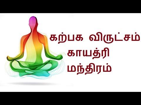 கற்பக விருட்சம் காயத்ரி மந்திரம்  Gayathri Mantra   Sattaimuni Nathar - Siththarkal -  Sithar