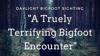 🙉A Truly Terrifying Bigfoot Encounter🙊 Daylight Sasquatch Sighting🙊