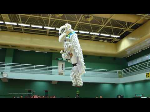 Hong Kong Open Championship - Chinese Lion Dance (2016)