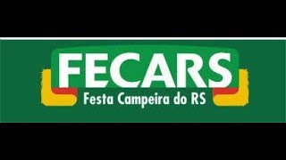 30º FECARS 2018 / VACA PARADA PIÁ ( 5 )