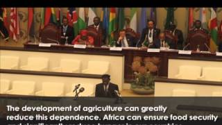 President Obiang Asks for Greater Investment in Agricultural Sector at the 23rd African Union Summit
