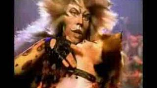 Cats The Musical DVD - The Rum Tum Tugger