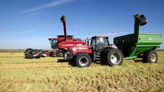 McKenzie Family Rice Harvest