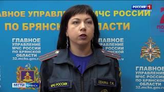 Специалисты МЧС устанавливают причины пожара на улице Фокина в Брянске