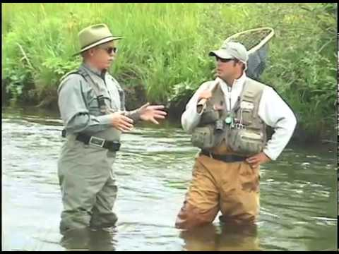 North Park Anglers Fly Fishing For Trout