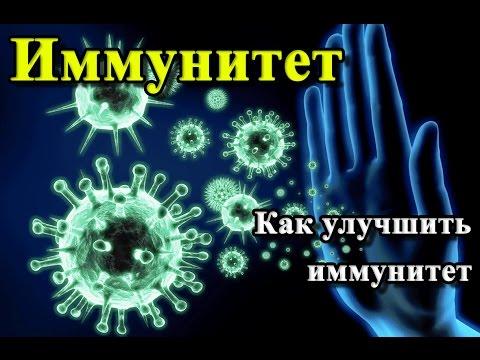 ИММУНИТЕТ. ИММУНОСТИМУЛЯТОРЫ Как поднять иммунитет.