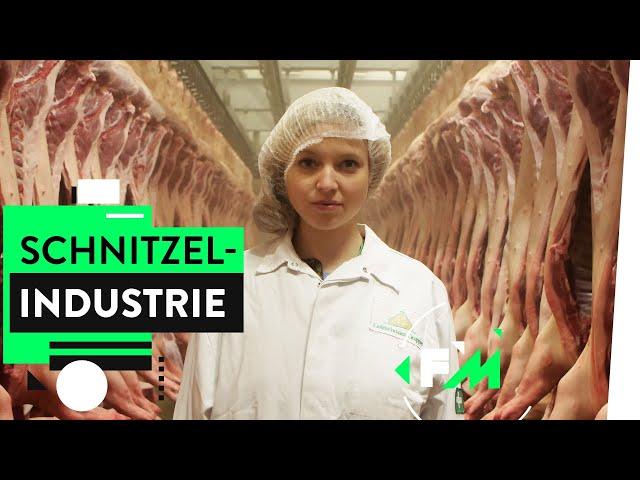 Das Geschäft mit Deutschlands Schweinen