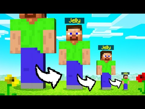 MINECRAFT But You SHRINK EVERY MINUTE...