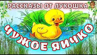ЧУЖОЕ ЯИЧКО  Детский рассказ  Константин Ушинский  Аудио рассказы  Поучительный рассказ