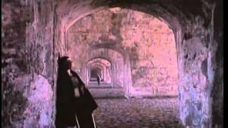Pafnucio Santo de R. Corkidhi Parte VIII