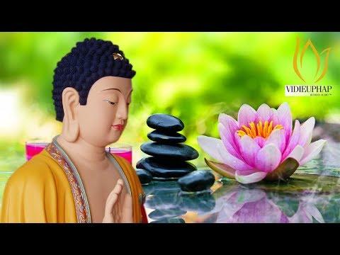 Nhạc Thiền Tĩnh Tâm   Nghe Để Xóa Đi Muộn Phiền - Ưu Tư Trong Cuộc Sống - Relaxing meditation