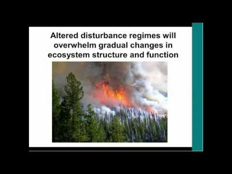 Forest Ecosystems and Climate Change Implications for Resource Management
