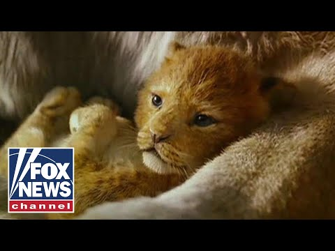 Washington Post op-ed links 'The Lion King' to fascism