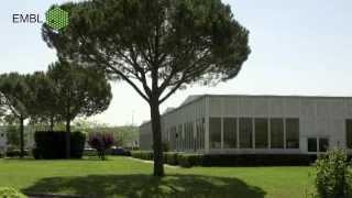 The European Molecular Biology Laboratory (EMBL) - Basic Research at it's Best thumbnail