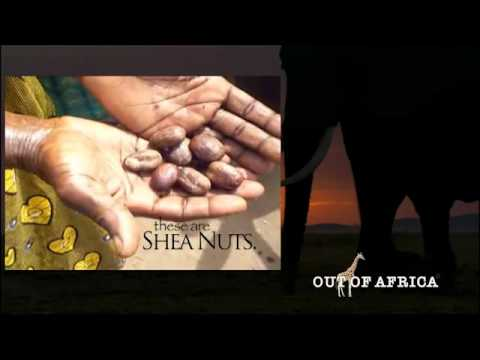 Out of Africa Shea Butter... How we came to be...