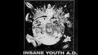 INSANE YOUTH A.D:just wanna be myself/god-damn war (japanese hardcore punk.2000 )
