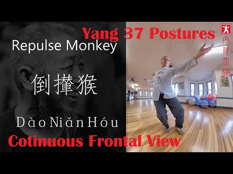 Zheng Man Qing 37 Postures W/Continuous Frontal Postures In English, Chinese And Pin Ying
