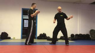 Roundhouse Kick with Amnon Darsa at Institute Krav Maga Netherlands.