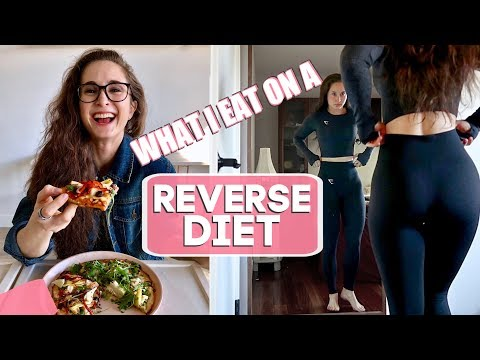 HOW TO START A REVERSE DIET | My Macros & Workout Program + What I Eat