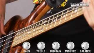 The Warwick LTD 2013 Thumb BO