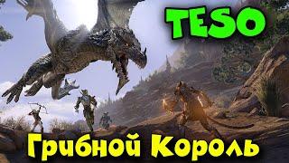 Скайрим онлайн - The Elder Scrolls Online - Изучаем мир